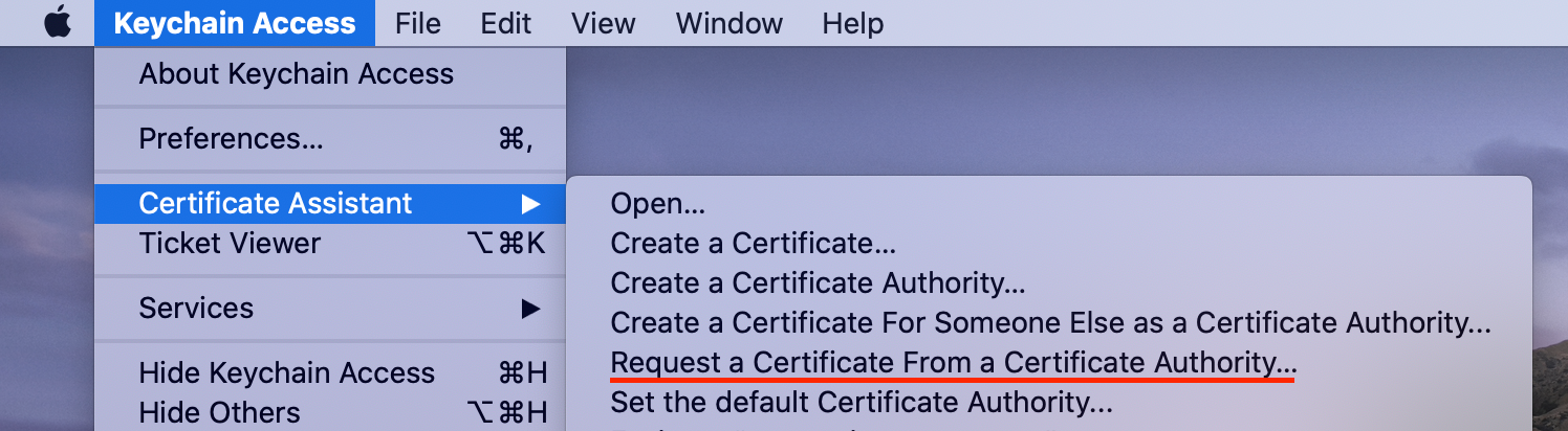Choose Request a Certificate From a Certificate Authority